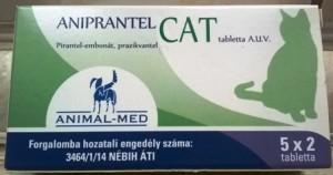 Féreghajtó macskának - Házhoz jön az állatorvos